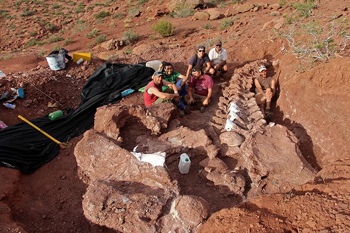 largest dinosaur excavation