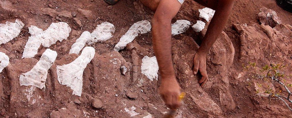 Handout photo showing the excavation process.