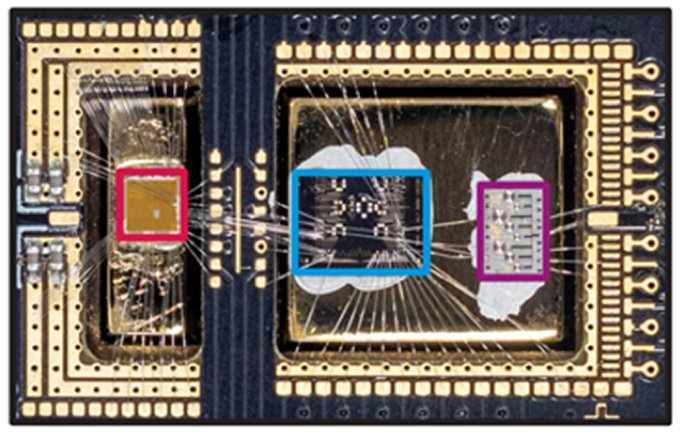 010 quantum gooseberry 1