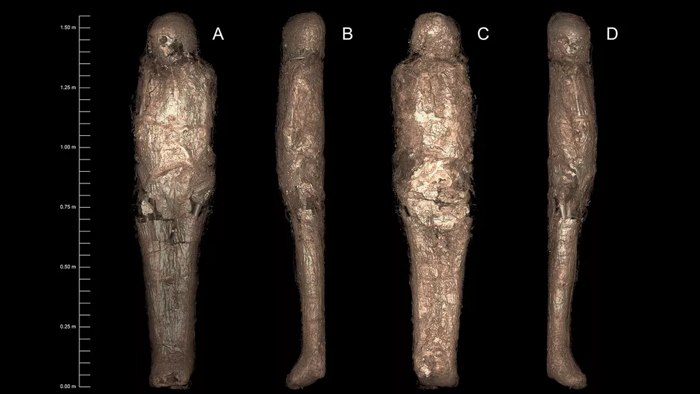 four views of the #D image of the mummy beneath the wrappings