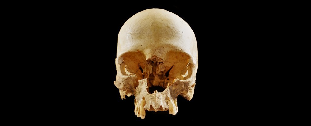 How Did This Skull End Up All Alone in a Cave in Italy? We Finally Have an Answer -