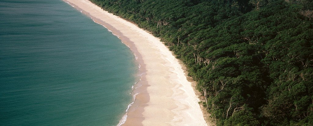 A beach in the Andaman Islands.
