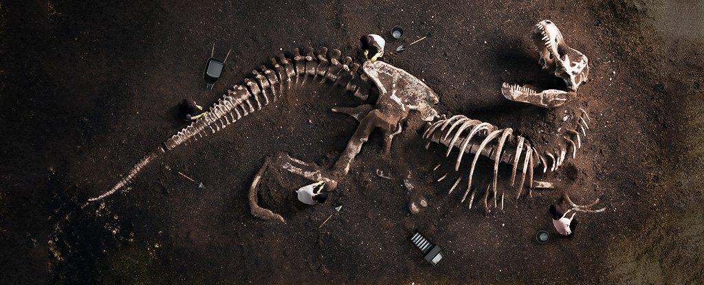 The Trouble With Dinosaur Bones