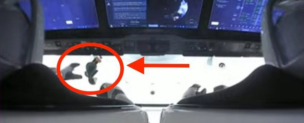 The stuffed penguin toy Guin Guin floating in zero gravity aboard the SpaceX Dragon capsule