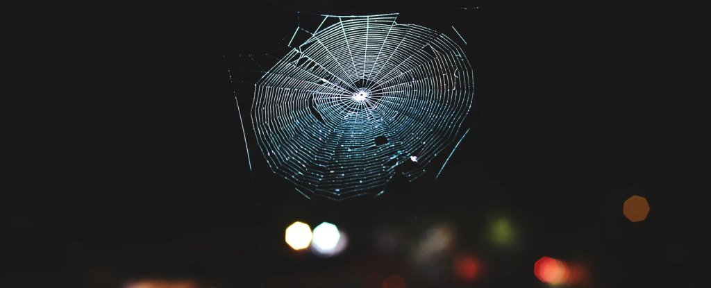 Most spiderwebs are more complex than a 2D structure.