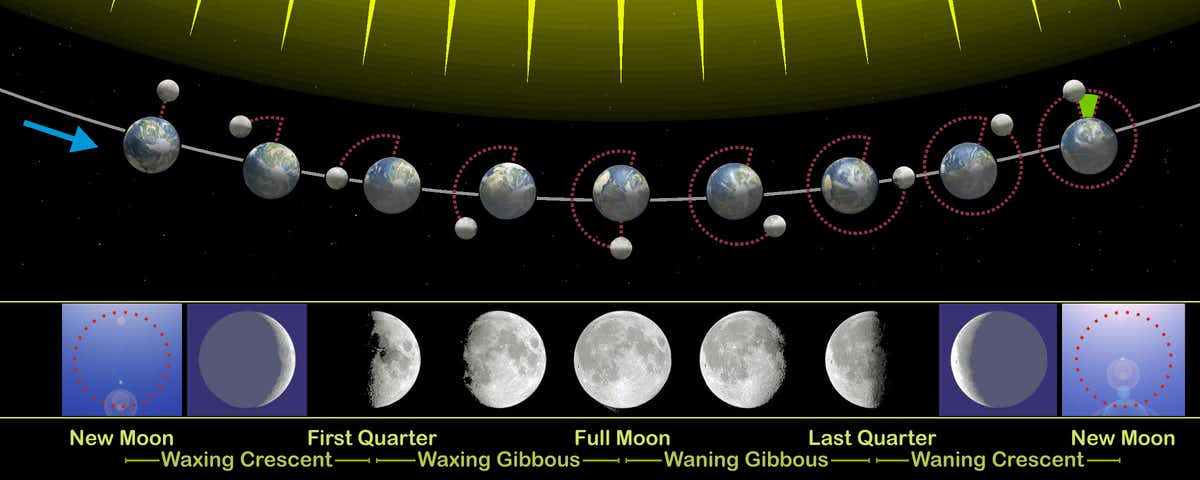 Moon phases correspond to how much of the lit–up side you can see from Earth. (Orion 8/WikimediaCommons/CC BY-SA)