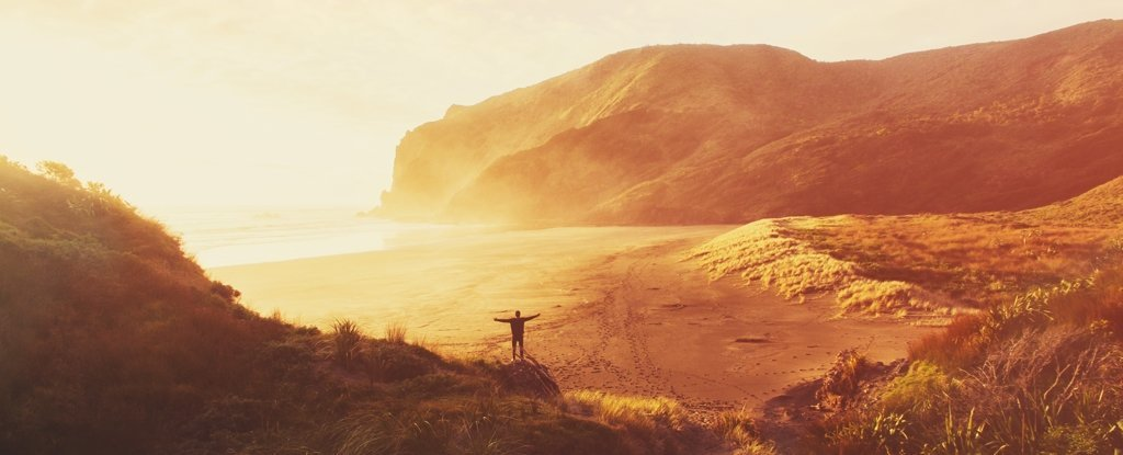 Anawhata Beach in North Island, New Zealand.