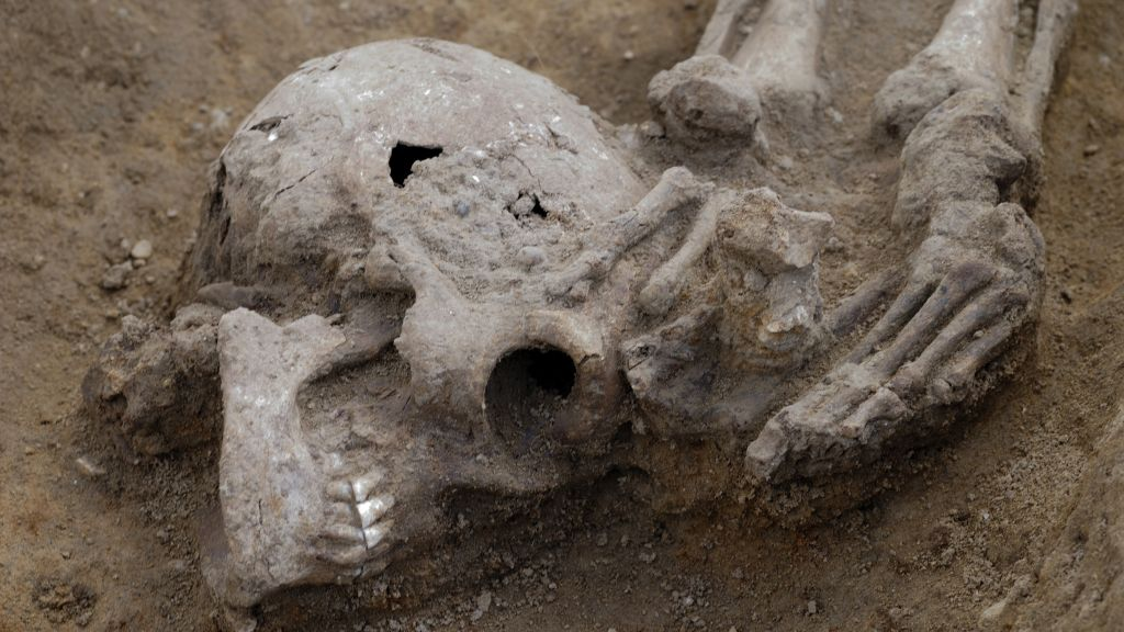 Many of their heads were buried at their feet. (Dave Webb/Cambridge Archaeological Unit)