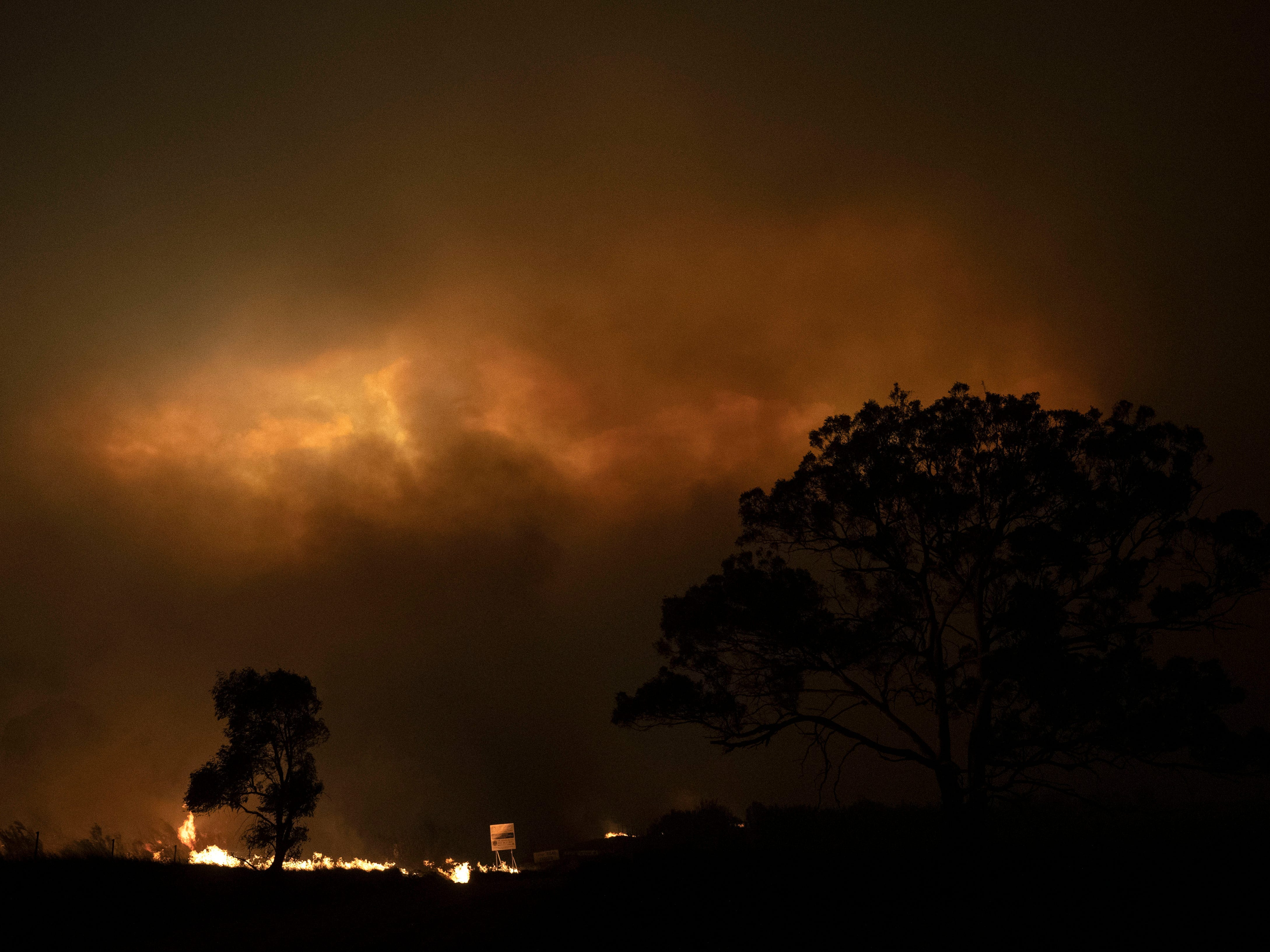 Pyrocumulonimbus cloud formed by bushfires in Australia, 1 February 2020. (Brook Mitchell/Getty)