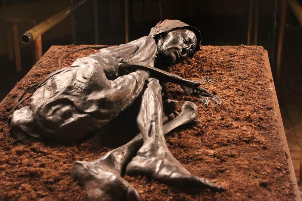 Tollund Man on display at Silkeborg Museum
