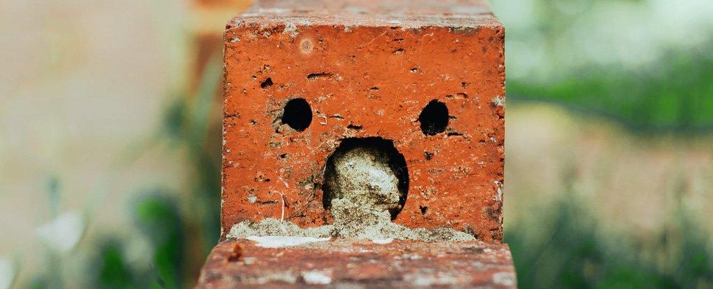 brick_with_face_unsplash_1024.jpg