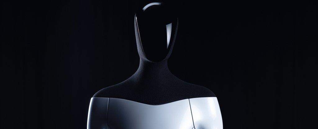 The Tesla Bot.