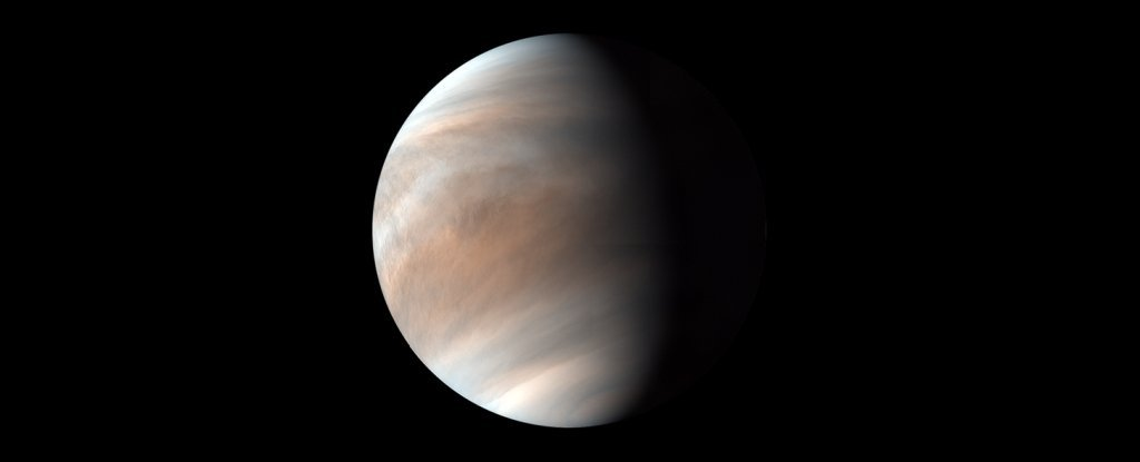 A New Paper Claims Photosynthesis Could Be Possible in The Clouds of Venus