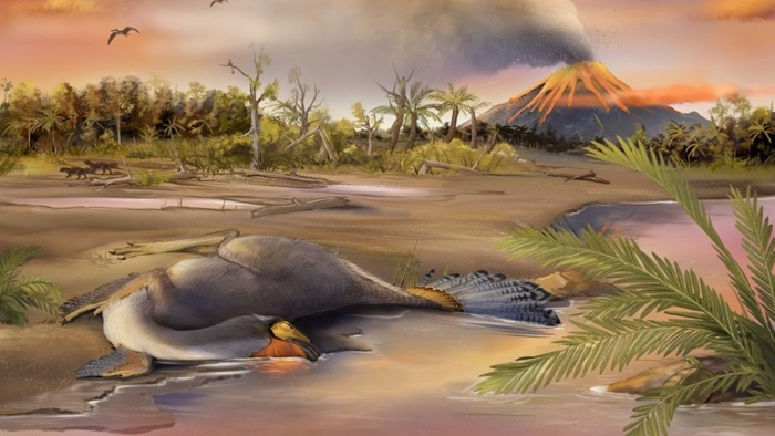 DinosaurImpression