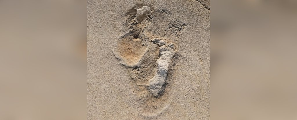 One of over 50 footprints identified in 2017 in Crete.