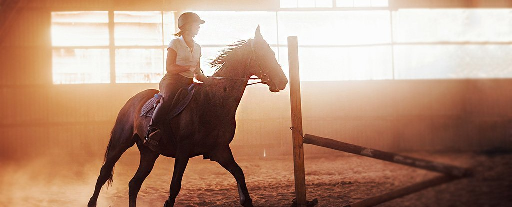 Horse Riding More Dangerous Than Skiis And Motorcycles, Injury Data Reveal