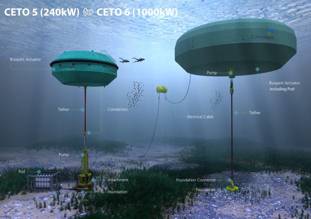 Diagram of the CETO 5 and the CETO 6 systems (Credit: Carnegie Wave Energy)