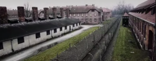 WATCH: This haunting drone footage shows Auschwitz 70 years after liberation
