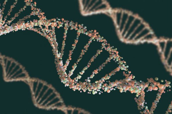 World-First Artificial Enzymes Suggest Life Doesn't Need DNA or RNA