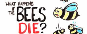 WATCH: What happens when all the bees die?