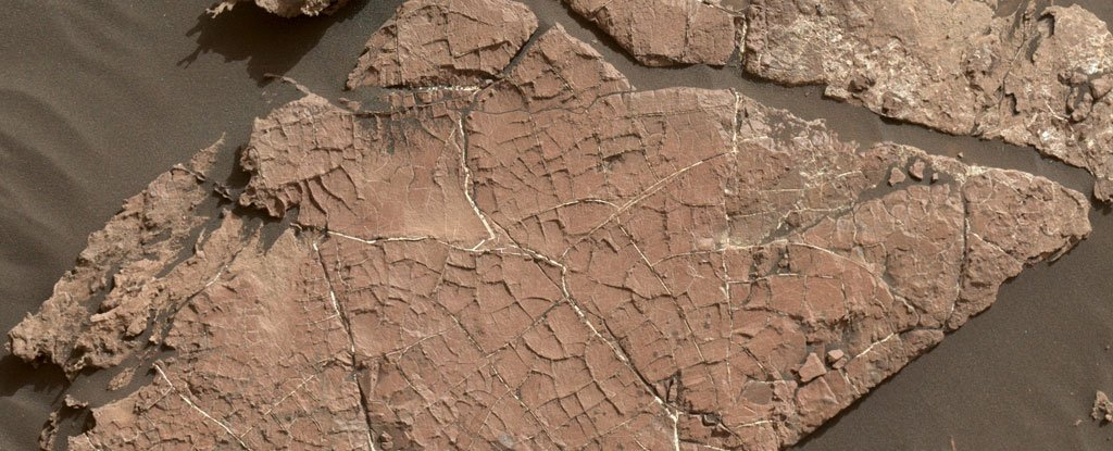 Curiosity Just Found The First Evidence of Ancient Mud Cracks on Mars