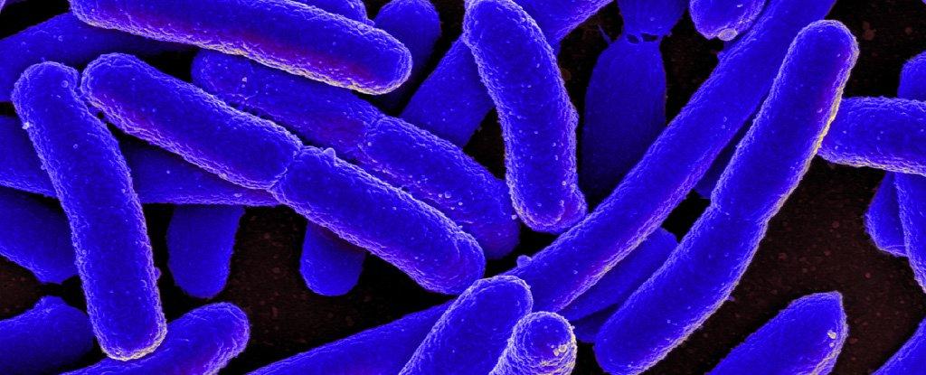 Killing Antibiotic-Resistant Bacteria