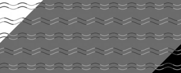 This crazy new optical illusion shows if you have 'curvature blindness'