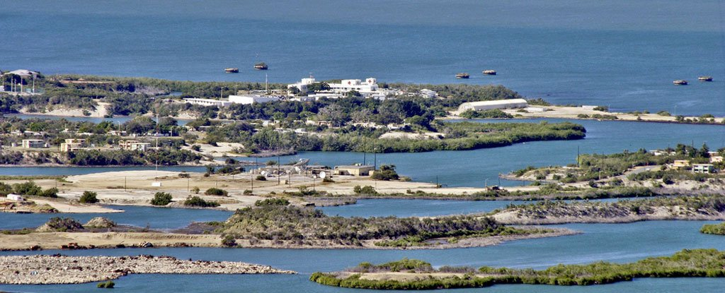 Scientists Want to Turn Guantanamo Bay Prison Camp Into a Marine Research Lab