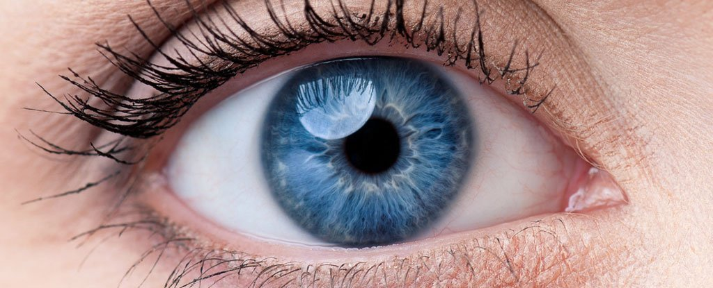 Japanese Scientists Have Used Skin Cells to Restore a Patient's Vision For The First Time