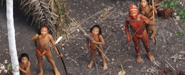 uncontacted tribe in the amazon reportedly massacred by illegal gold