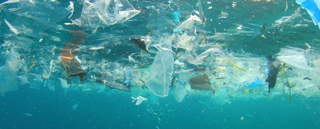 Great Pacific Garbage Patch Worse Than Previously Known