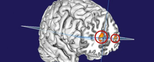 Scientists May Have Found The Part of The Brain That Enables