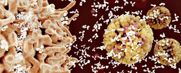 Newly Engineered Antibody Can Fight Back Against 99% of HIV Strains
