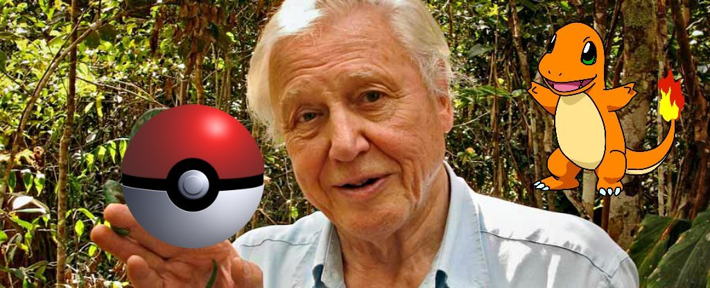 David Attenborough Narrating PokéMon Go Is Everything You Dreamed And More