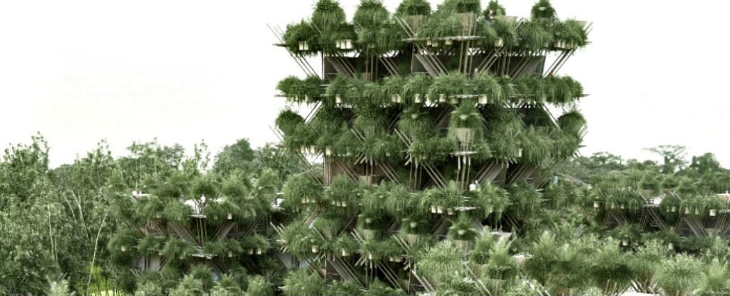 This insane bamboo treehouse doesn't use any nails or screws - ScienceAlert