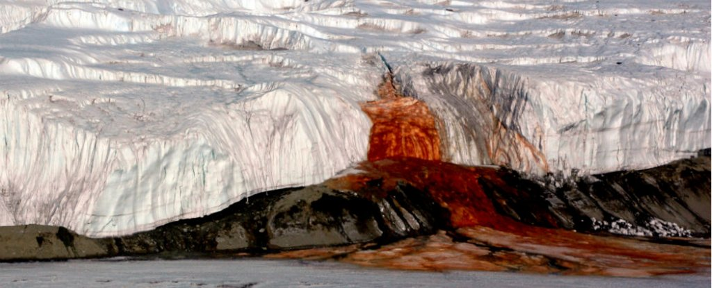 First samples collected from under Antarctica's blood falls