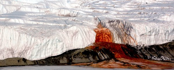 The mystery path of Antarctica's Blood Falls has finally been revealed