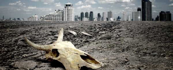 Researchers think we might need to live in cities of 'bone' in the future