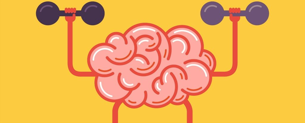 Want to Lose Weight? Train The Brain, Not The Body