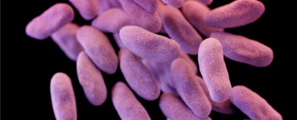 "Drug-resistant ""nightmare bacteria"" are quickly spreading through US hospitals"