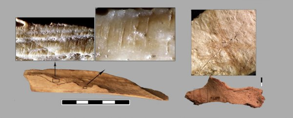 Archaeologists have found evidence of cannibalism in Spain 10,000 years ago