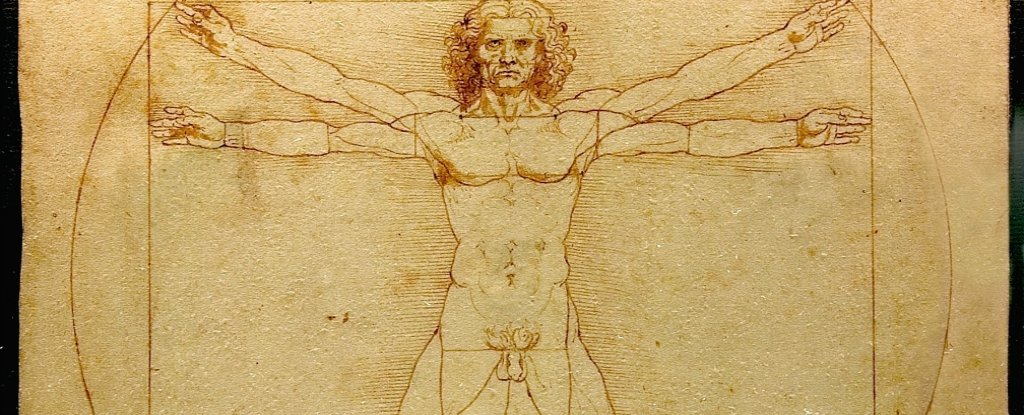 The human body has gone through four main stages of evolution ...