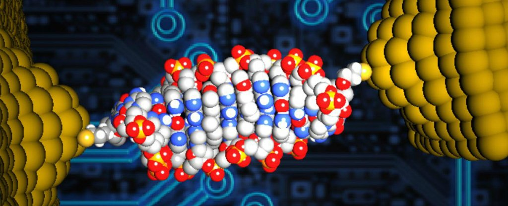 Scientists Just Made The World's Smallest Diode Out of DNA