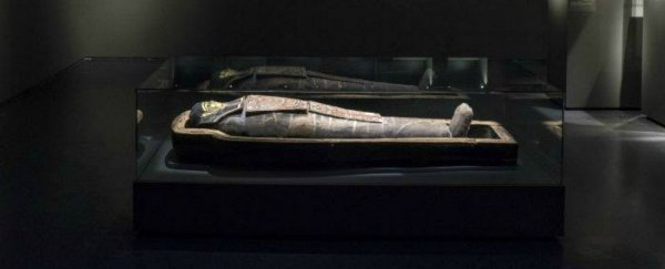 This 2,200-year-old Egyptian mummy binged on carbs and sat a lot