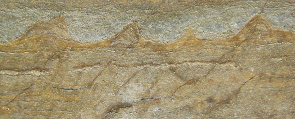 The World's Oldest Known Fossils Have Been Found - And They're 3.7 Billion Years Old