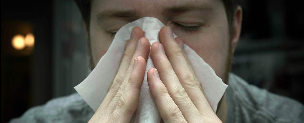 Scientists Just Got a Step Closer to Creating a Universal Allergy Treatment