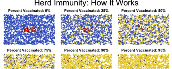 This short animation explains beautifully how herd immunity works
