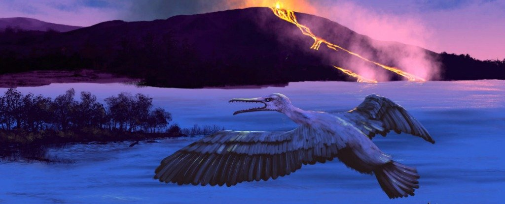 A Just-Discovered, 90 Million Year-Old Bird Could Help Us Predict The Future of The Planet