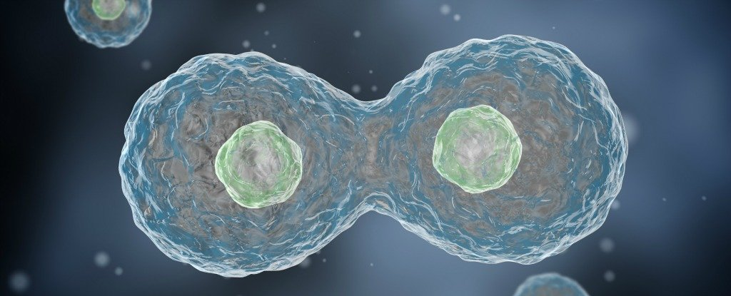 We Might Finally Know What Triggered Living Cells to Evolve For The First Time