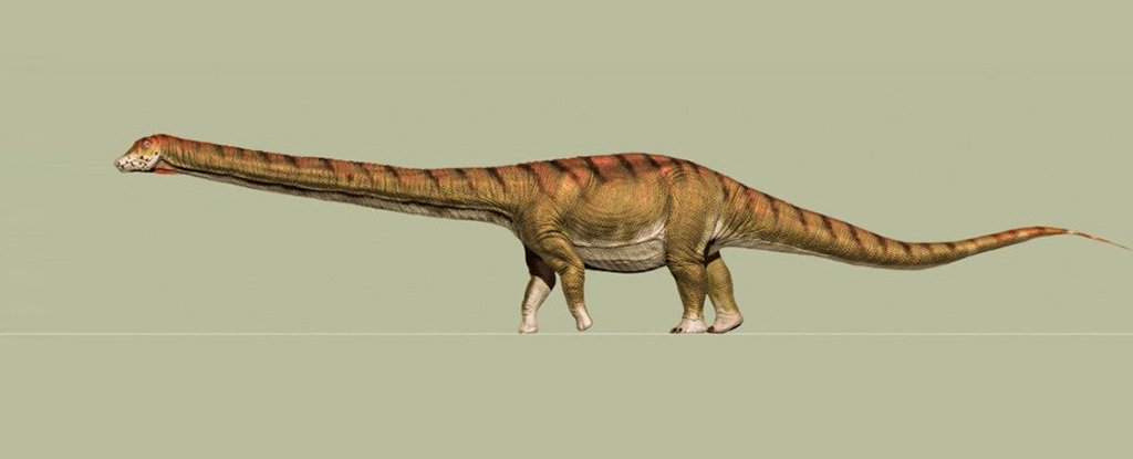 Which Dinosaur Is The Biggest? There's a New Contender - And It's Alarmingly Large